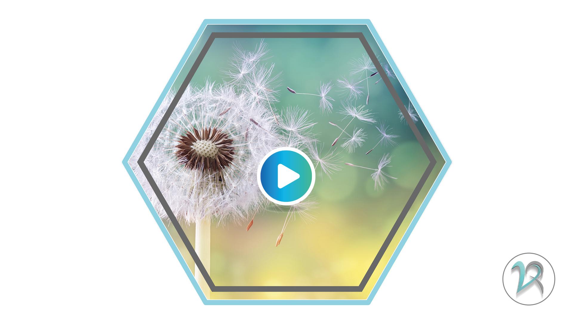 vanessa_videovorlage_button_allergie.jpg